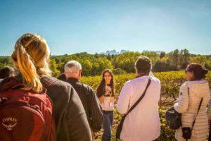Tour a Montserrat con vinos y tapas